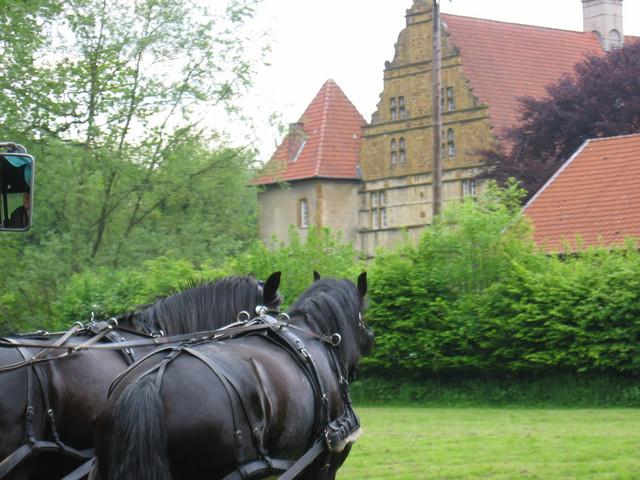 Schloss in Privatbesitz am Teutoburger Wald