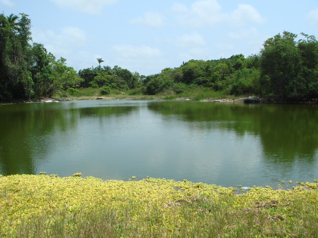 Wasserreservoire von Altun Ha