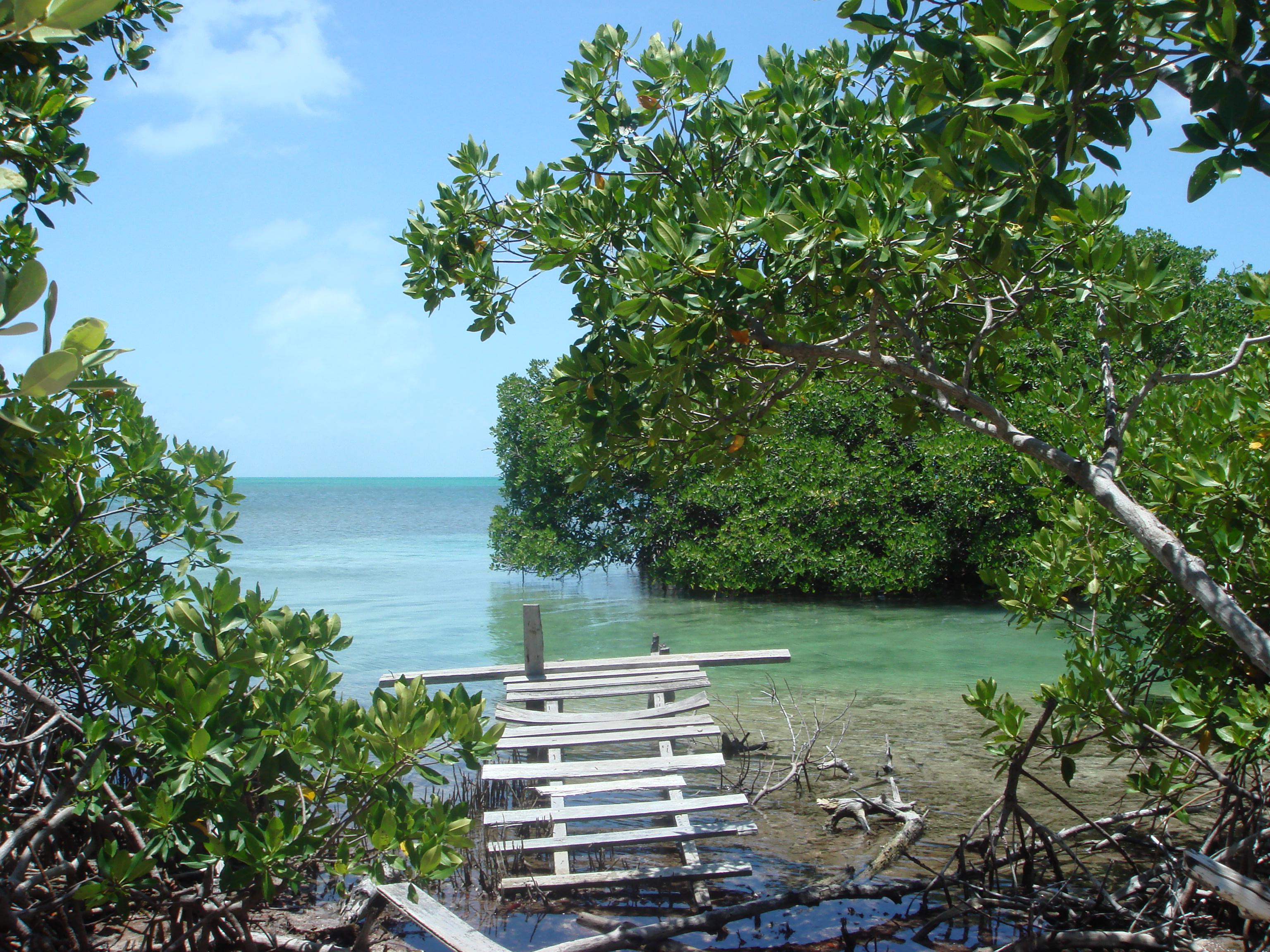 Cay Cauker Westend