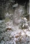invierno 2003