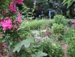 Vorgarten im Juli