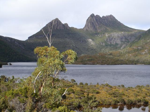 Tasmanien Cradle Mountain national park