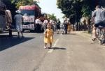 carneval13