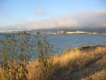 Berkeley Blick auf die Bay