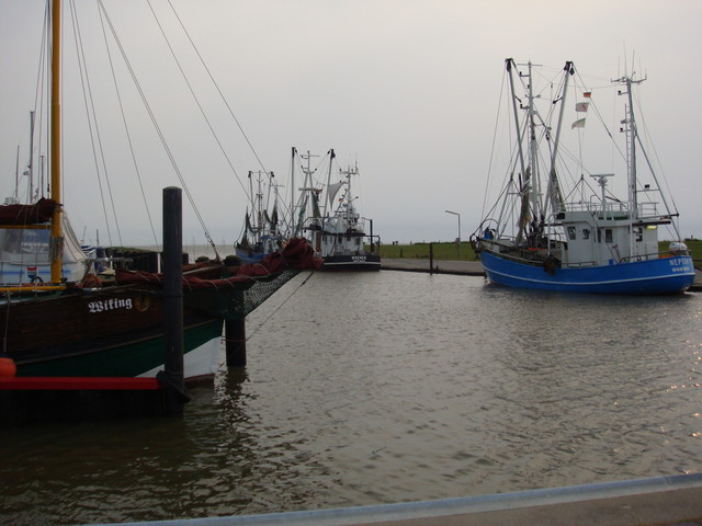Fischereihafen in Wremen