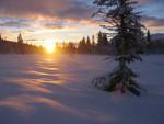 Sonnenaufgang am 2.1.2006 - hier fing ich an, die Morgenstimmung von Edvard Grieg zu singen