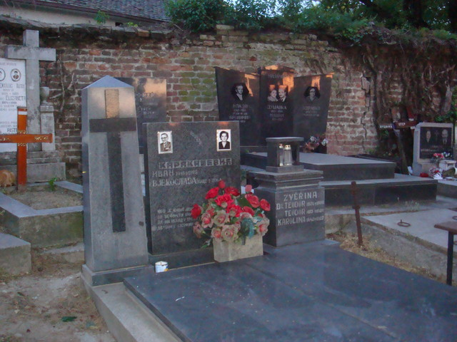 Friedhof Zemun