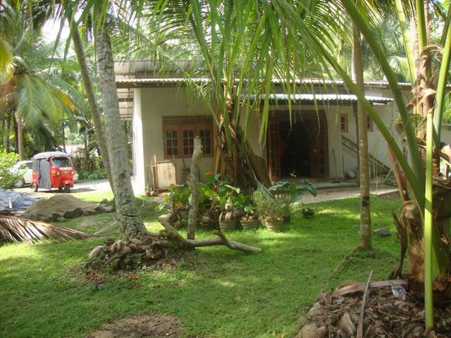 Garten von Samanthas Familie