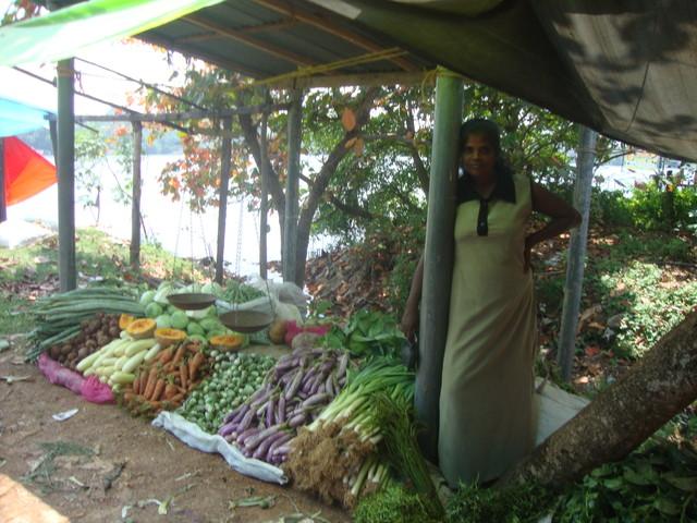 Markt Aluthgama