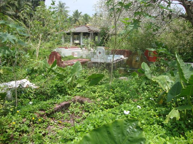 alter Friedhof Aluthgama