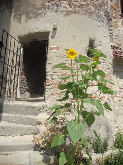 Eingang zum Kirchturm in Wurmloch