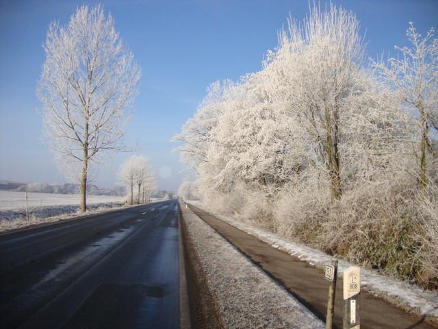 auf nach Wangerooge! 25.1.2013