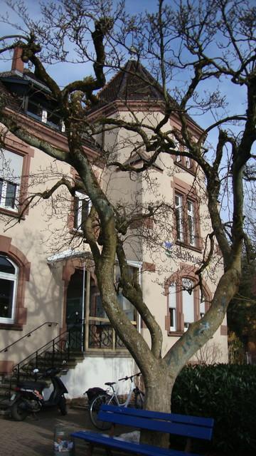 Steinen Rathaus