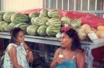 Highlight for Album: Rarotonga