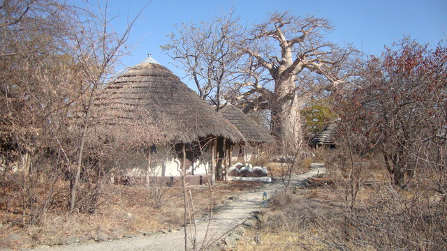 Planet Baobab Lodge