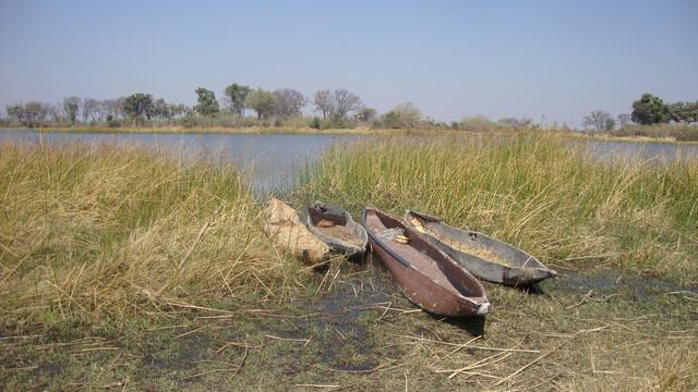 Okawangodelta unsere Anlegestelle