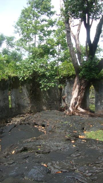 Lava fields in Savaii