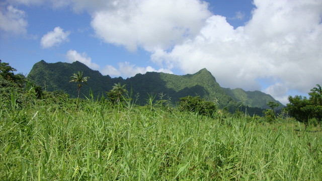 Upolu; im Bergland nahe Mafa Pass
