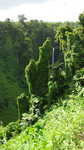 Samoa Wasserfall