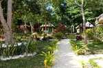 Aniwa im Garten der Ocean View Lodge