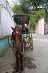 Kutschfahrt durch Intramuros