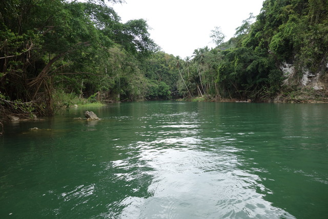 Bohol Flussfahrt Loboc River