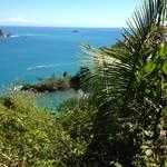 Highlight for Album: Costa Rica