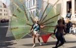 carnival19
