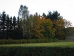 winterberg im Herbst