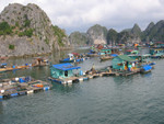 V Halong floating village