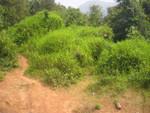 Erosionsbruch auf dem Weg nach Vang Vieng