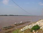 Fischfang am Mekong