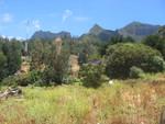 Landschaft auf der Robinson-Insel