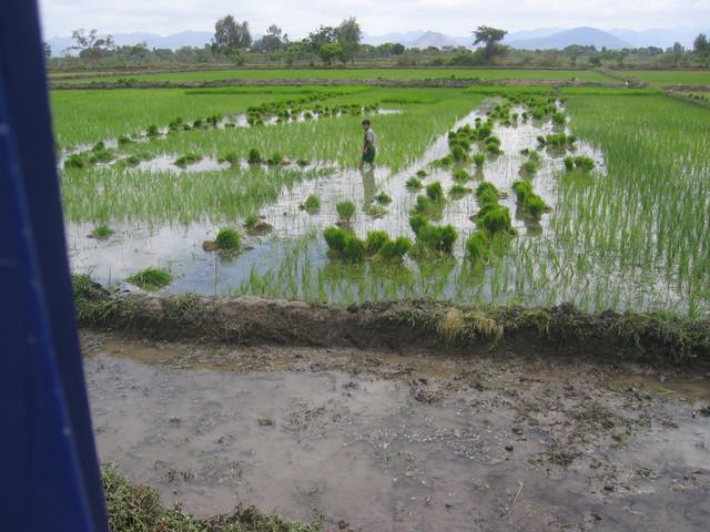 Region Chiclayo
